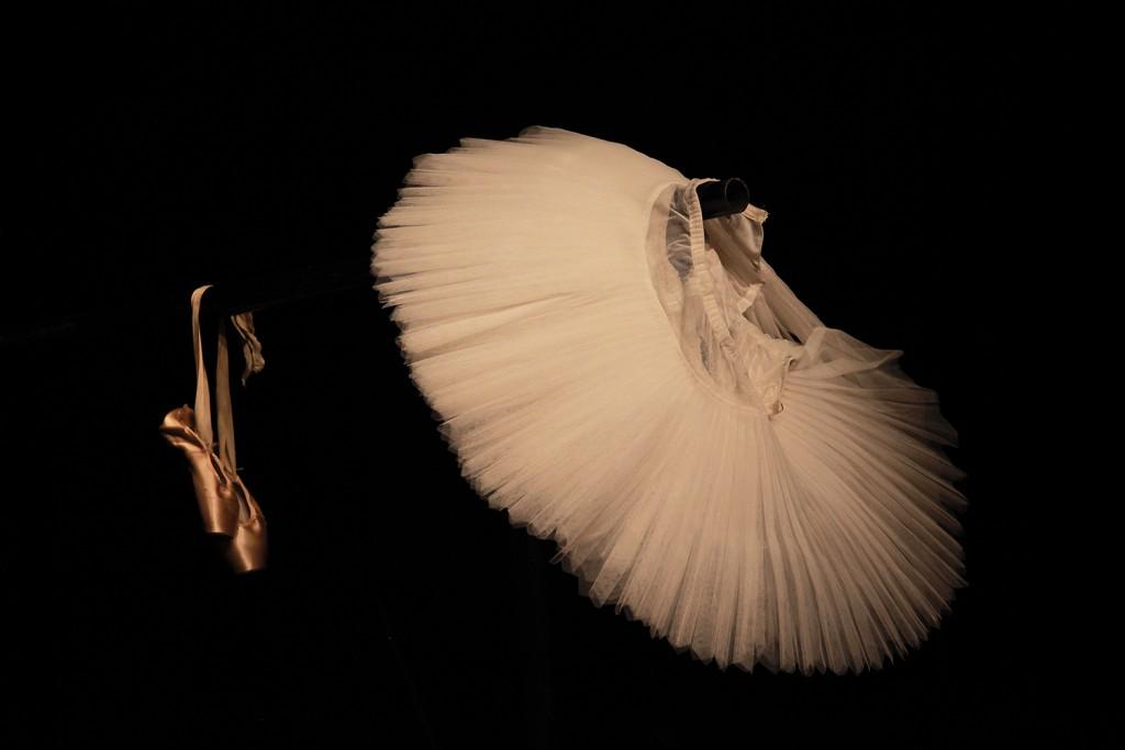 balerine_urska boljkovac (25)-mala